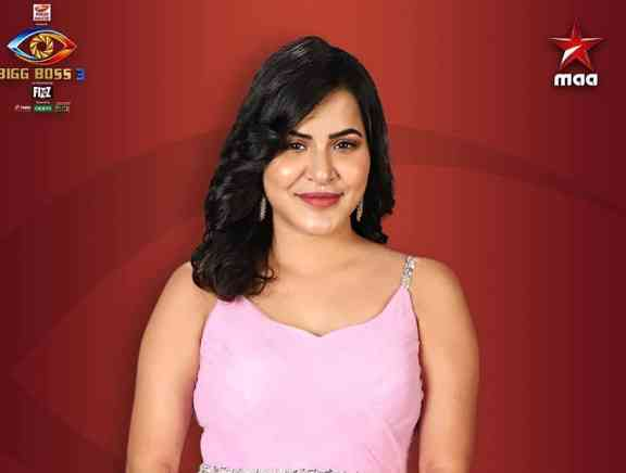 Bigg Boss Telugu Season 3 Contestants