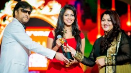 Celebs at SIIMA 2014 Awards Day 1