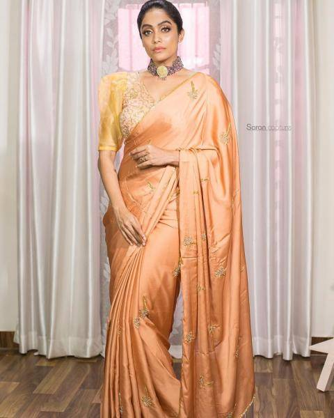 The V-necked, Leg O' Mutton sleeved blouse matches the saree well - Fashion Models