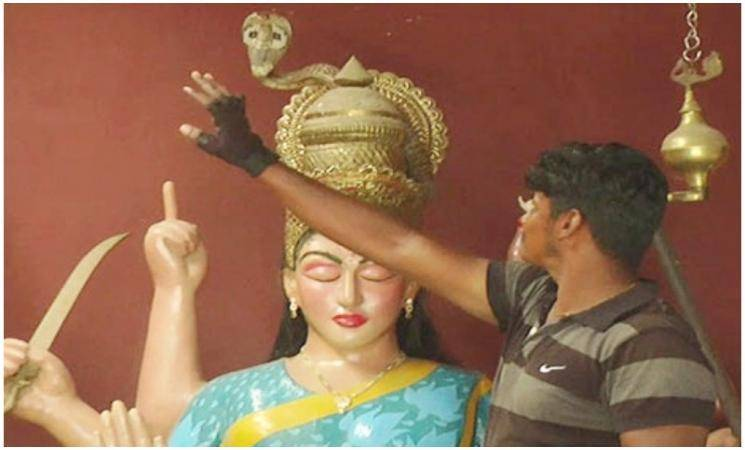 அம்மன் சிலை மீது அமர்ந்த நல்ல பாம்பால் பரபரப்பு! - Daily Cinema news