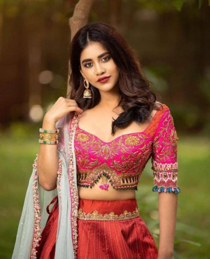 Nabha Natesh actress images
