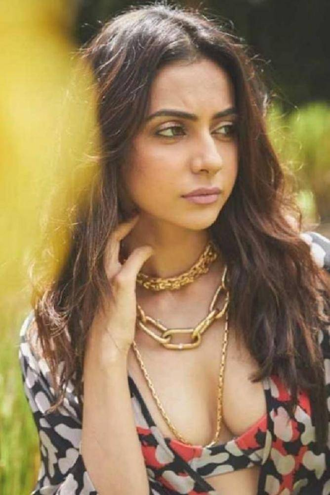 Rakul Preet Singh - Telugu Photos Stills Images
