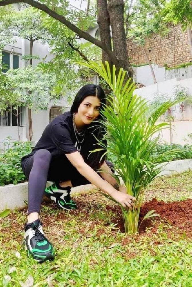Shruti Haasan - Photos Stills Images