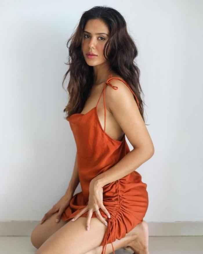 Sonam Bajwa actress images