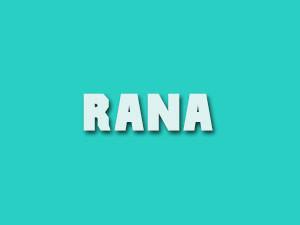 Rajinikanth's Rana