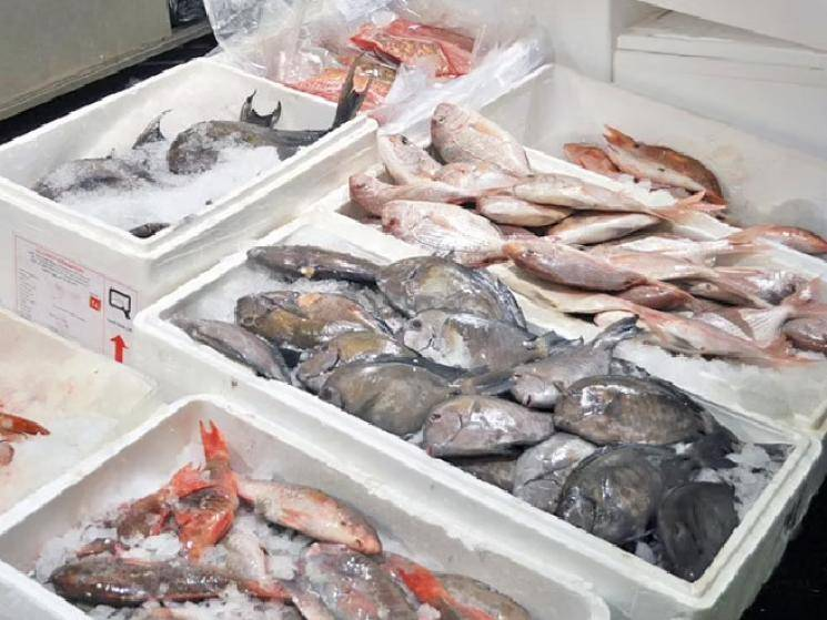 China suspends fish import from India after finding COVID samples!