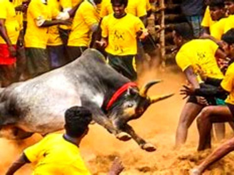 ஜல்லிக்கட்டு நடத்த கட்டுப்பாடுகளுடன் தமிழக அரசு அனுமதி!