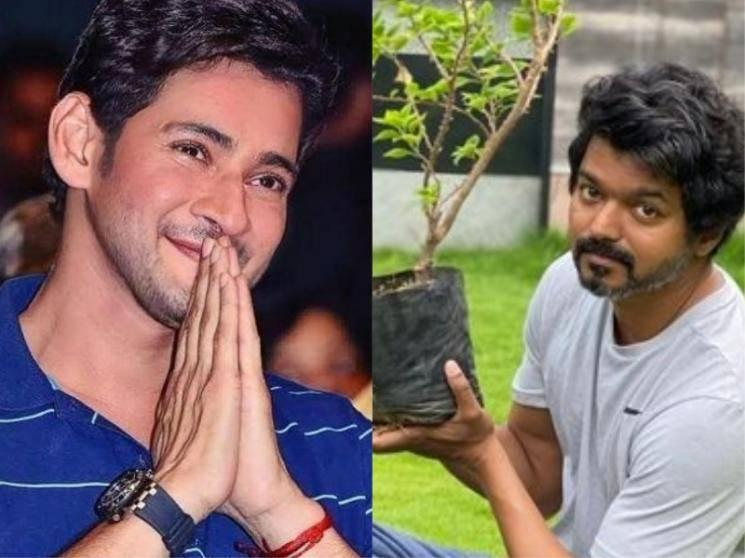 Thanks A Lot Brother - Mahesh Babu's Mass Reply & Celebrities React To Thalapathy Vijay's Viral Pics